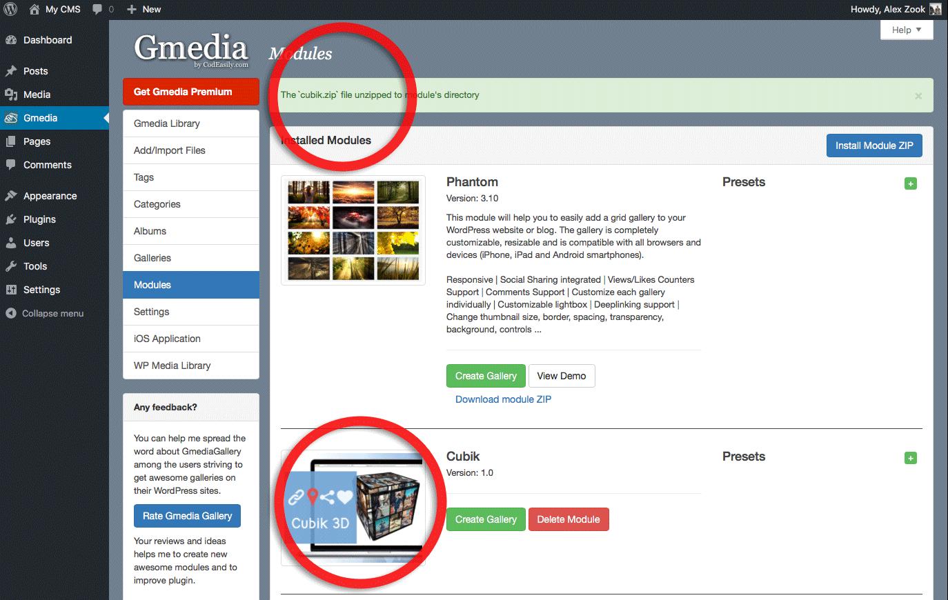 Elive 20 installer module download