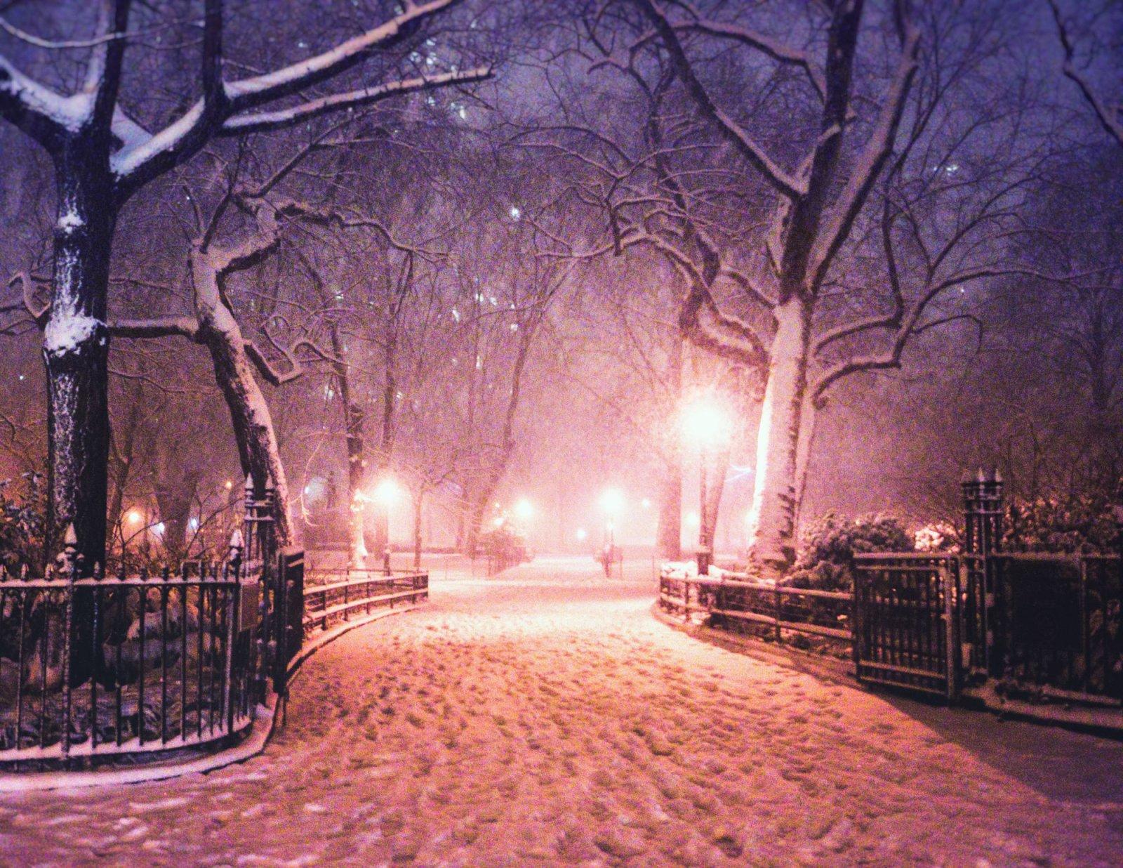 New York City Snow Madison Square Park