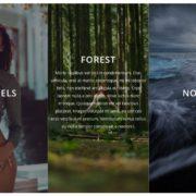 Albums Stripes Albums covers