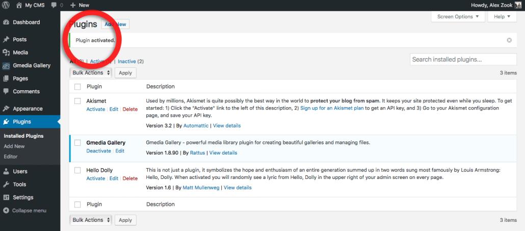 Wordpress plugin Activated