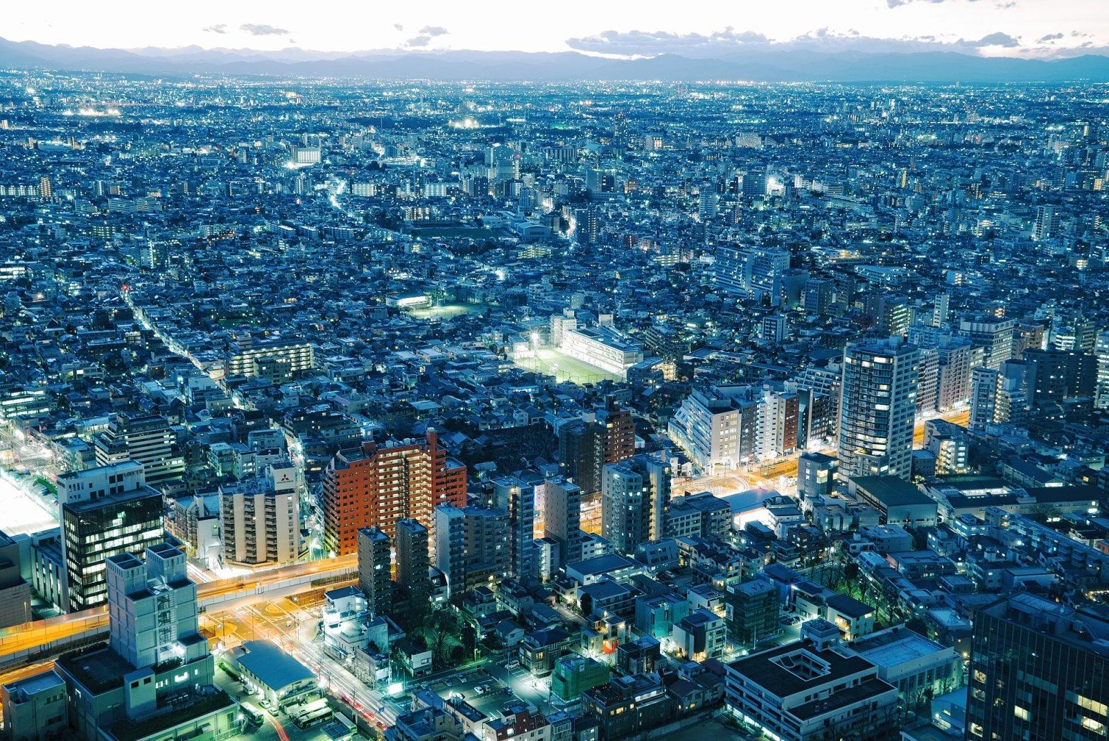 Tokyo Cityscape - Dusk