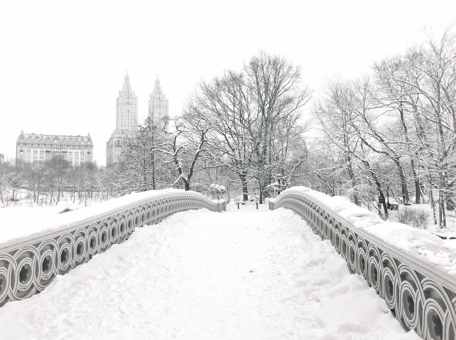 Central Park - Snow