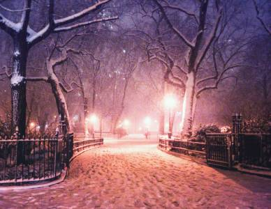 New York City Snow Madison Square Park